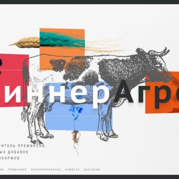 Заказать сайт визитку в Гродно